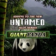 Spiele Big Panda - Video Slots Online